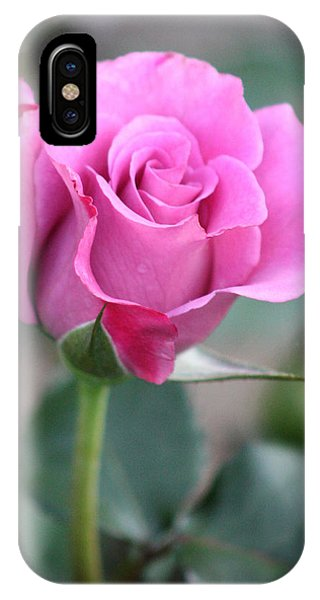 Purple Rose IPhone Case