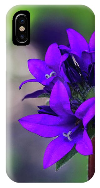 IPhone Case featuring the photograph Purple Spring Flower by Cristina Stefan