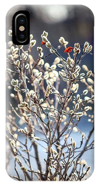 Pussy Willow IPhone Case