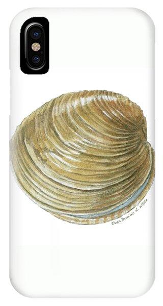 Quahog Shell IPhone Case