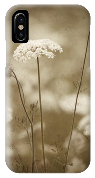 Queen Anne Lace IPhone Case