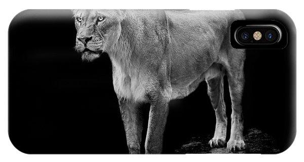 Big Cat iPhone Case - Queen by Paul Neville