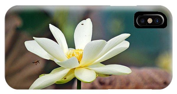 Quest For Pollen Phone Case by Teresa Blanton