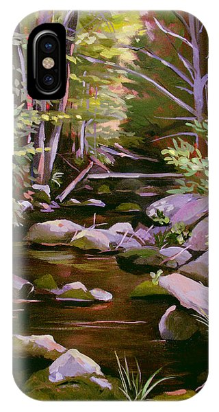 Quiet Brook IPhone Case
