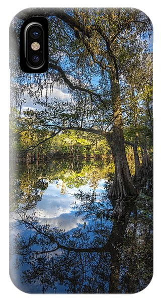 Ibis iPhone Case - Quiet Embrace by Marvin Spates