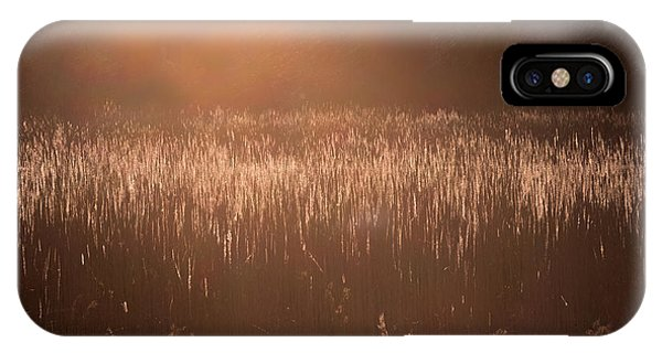 Quiet Evening Light IPhone Case