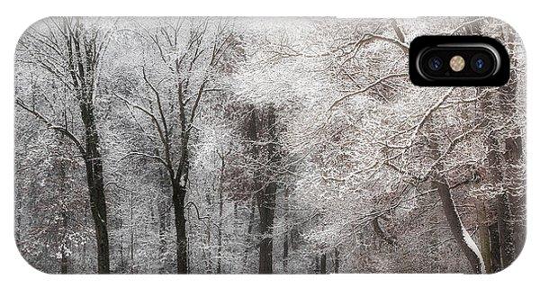 Quiet Winter  IPhone Case