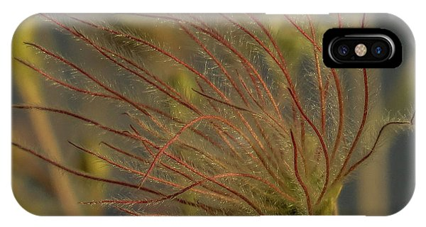 Quirky Red Squiggly Flower 4 IPhone Case