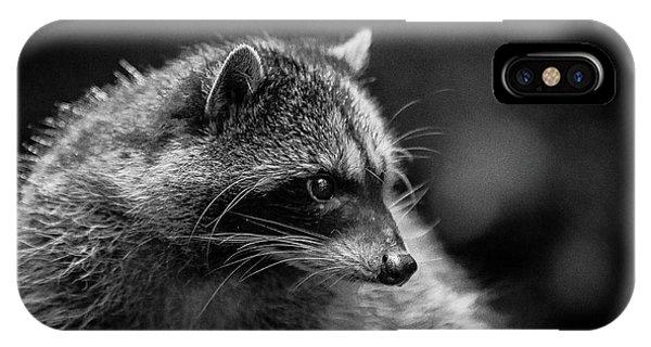 Raccoon 3 IPhone Case