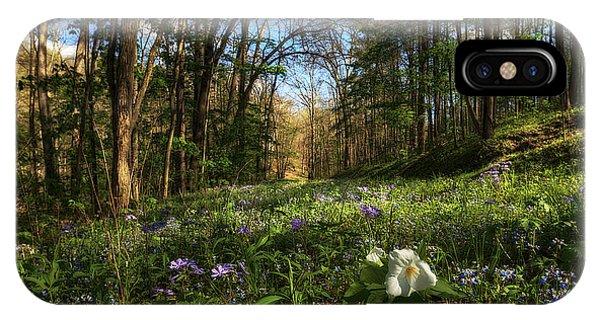 Raccoon Creek Flowers IPhone Case