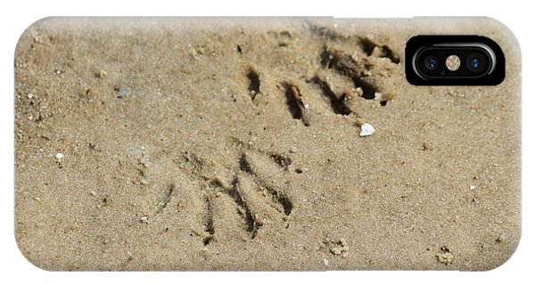 Raccoon Tracks In The Sand IPhone Case