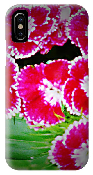 Radiant Red  Phone Case by Debra     Vatalaro