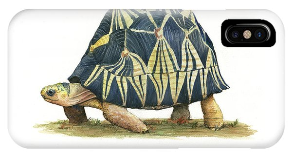 Radiated Tortoise  IPhone Case