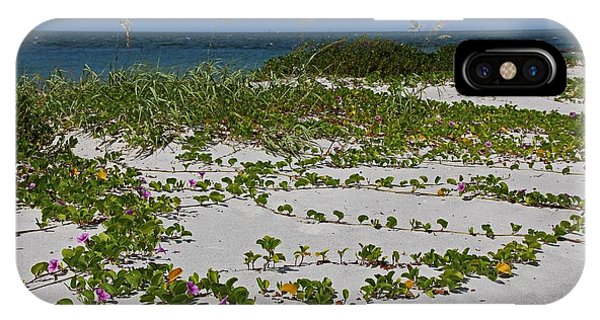 Railroad Vines On Boca IIi IPhone Case
