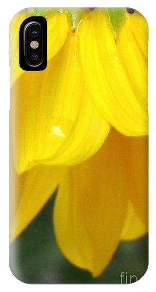 Rain And Sunshine On A Colorado Wildflower IPhone Case