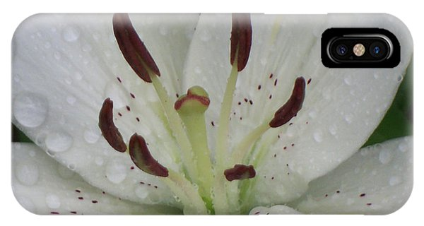 Rain Drops On Lily IPhone Case