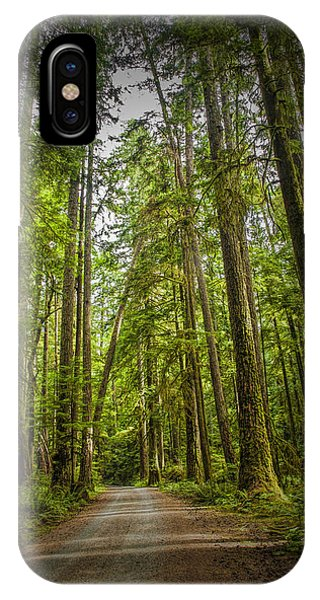 Rain Forest Dirt Road IPhone Case