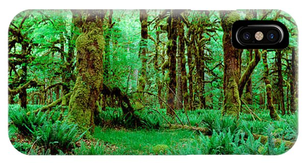 Rain Forest, Olympic National Park IPhone Case