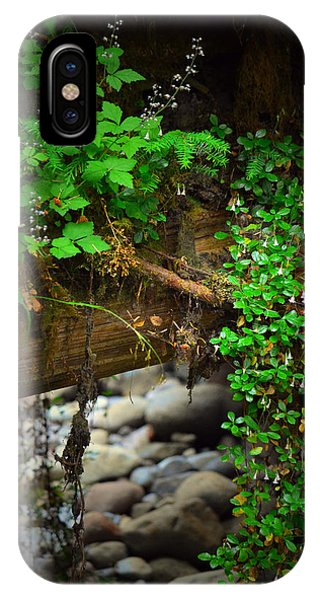 Rain Forest Walk IPhone Case