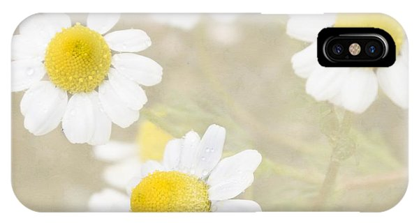 Rain-kissed Chamomile IPhone Case