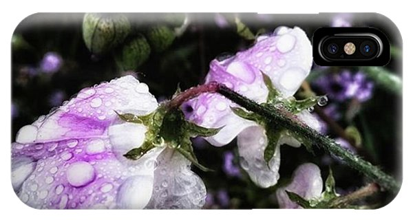 IPhone Case featuring the photograph Rain Kissed Petals. This Flower Art by Mr Photojimsf