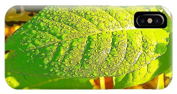 Rain On Leaf IPhone Case