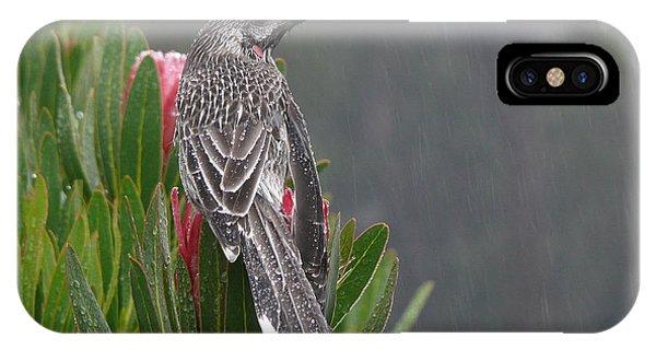 Rainbird IPhone Case