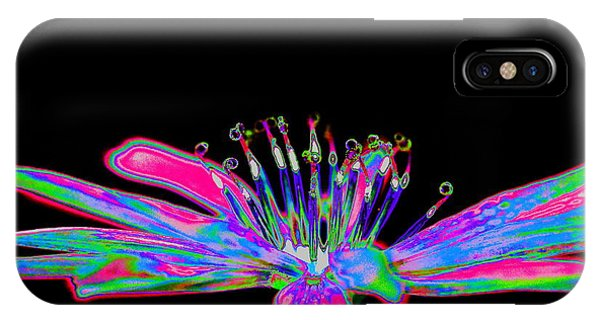 Rainbow Chicory IPhone Case