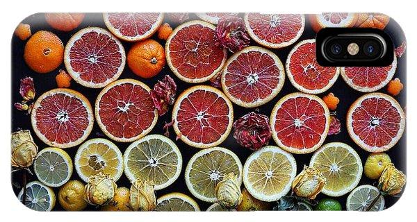Rainbow Citrus Etc IPhone Case