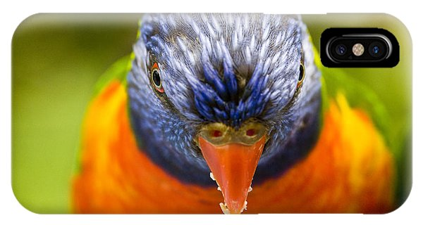 Parrot iPhone Case - Rainbow Lorikeet by Sheila Smart Fine Art Photography