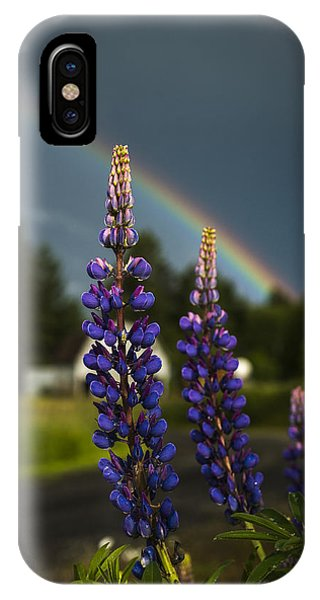 Rainbow Over Lupine  IPhone Case
