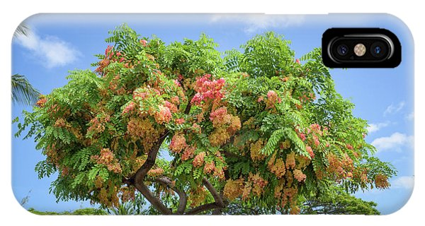 IPhone Case featuring the photograph Rainbow Shower Tree 1 by Jim Thompson