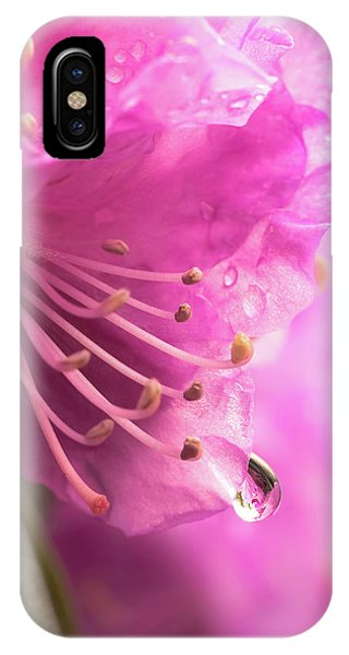 Raindrop On Rhododenron IPhone Case