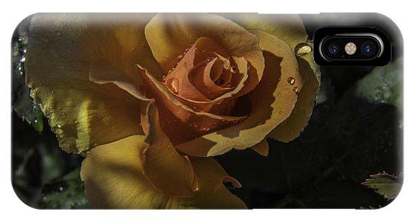 Raindrop Rose IPhone Case