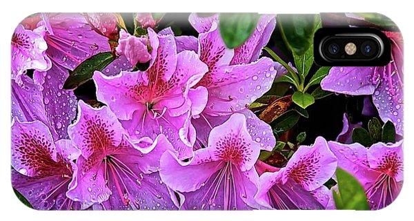 Raindrops, Magenta Lilies  IPhone Case