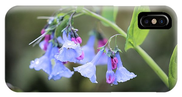 Raindrops On Blue Bells IPhone Case