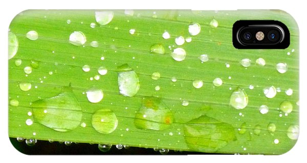Raindrops On Leaf IPhone Case