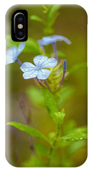 Raindrops On Petals IPhone Case