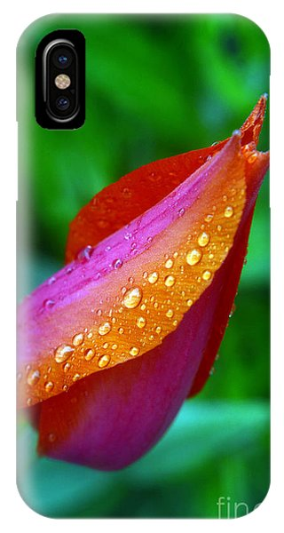 Raindrops On Tulip IPhone Case