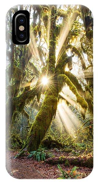 Olympic National Park iPhone Case - Rainforest Magic by Jamie Pham