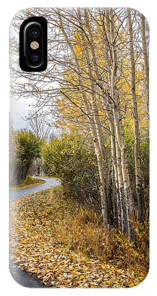 IPhone Case featuring the photograph Rainy Autumn Walk by Tim Newton