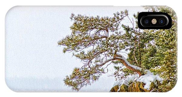 Rainy Lake Pine IPhone Case