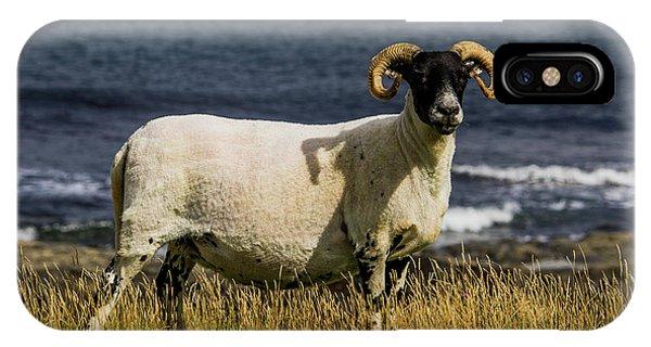 Ram With Attitude IPhone Case