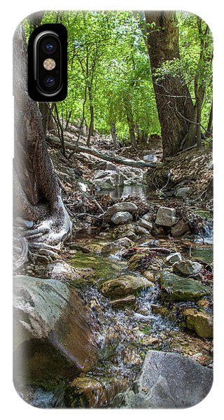 Ramsey Canyon Preserve IPhone Case