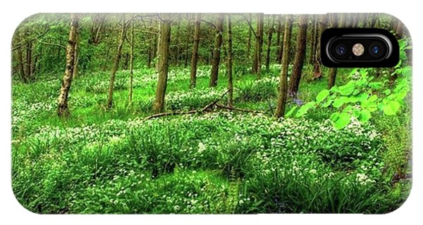 Landscapes iPhone Case - Ramsons And Bluebells, Bentley Woods by John Edwards