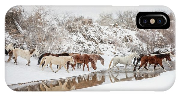 Ranch Horse Winter IPhone Case
