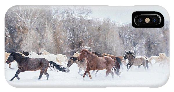 Ranch Run IPhone Case