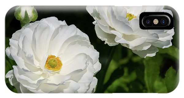 Ranunculus White Flowers IPhone Case