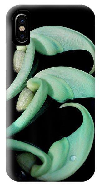 Rare Orchid Petals IPhone Case