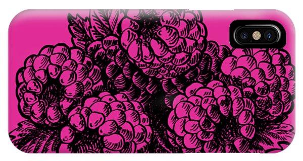 Lid iPhone Case - Rasbperries by Irina Sztukowski